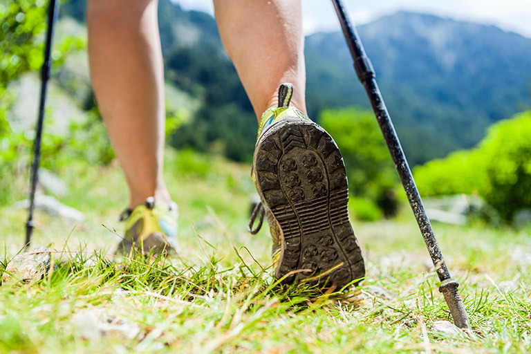 Nordic Walking Experience